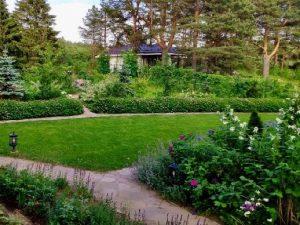 Сад непрерывного цветения с малым бюджетом
